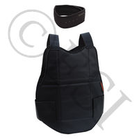 Chest and Neck Protector Combo