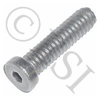 Screw - Hex - Low Head - 1 Inch
