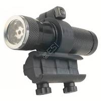 Flashlight &amp; Laser with Mount