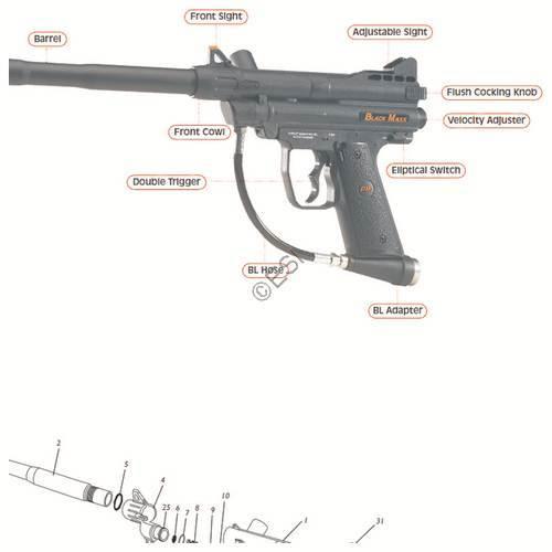 Fine Pmi Black Maxx Gun Diagram Wiring Digital Resources Instshebarightsorg
